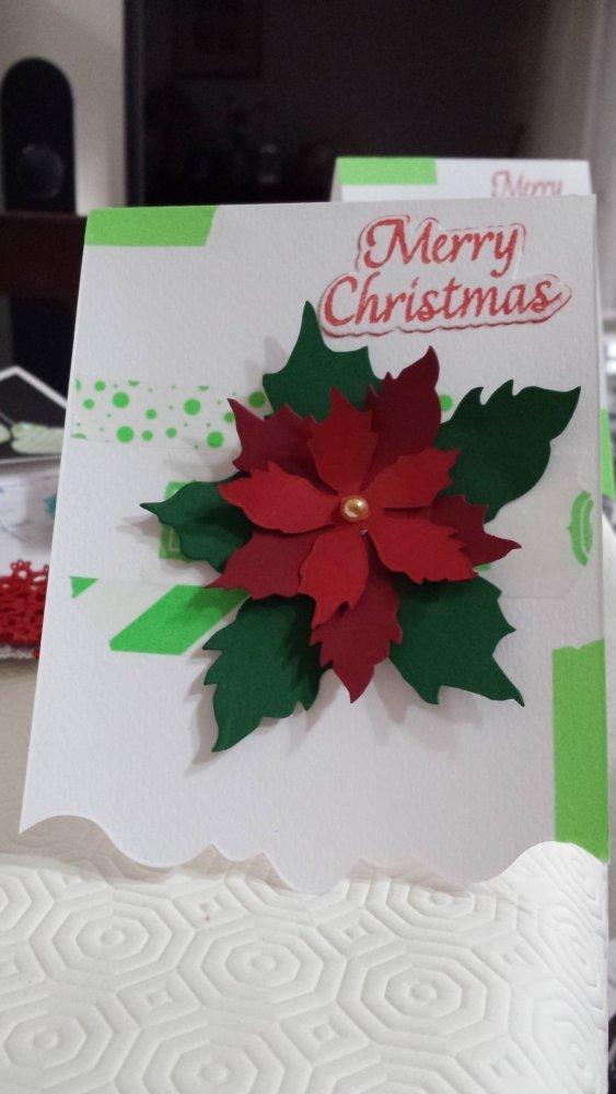 SPEDIZIONE GRATUITA! Card Natalizia con poinsettia