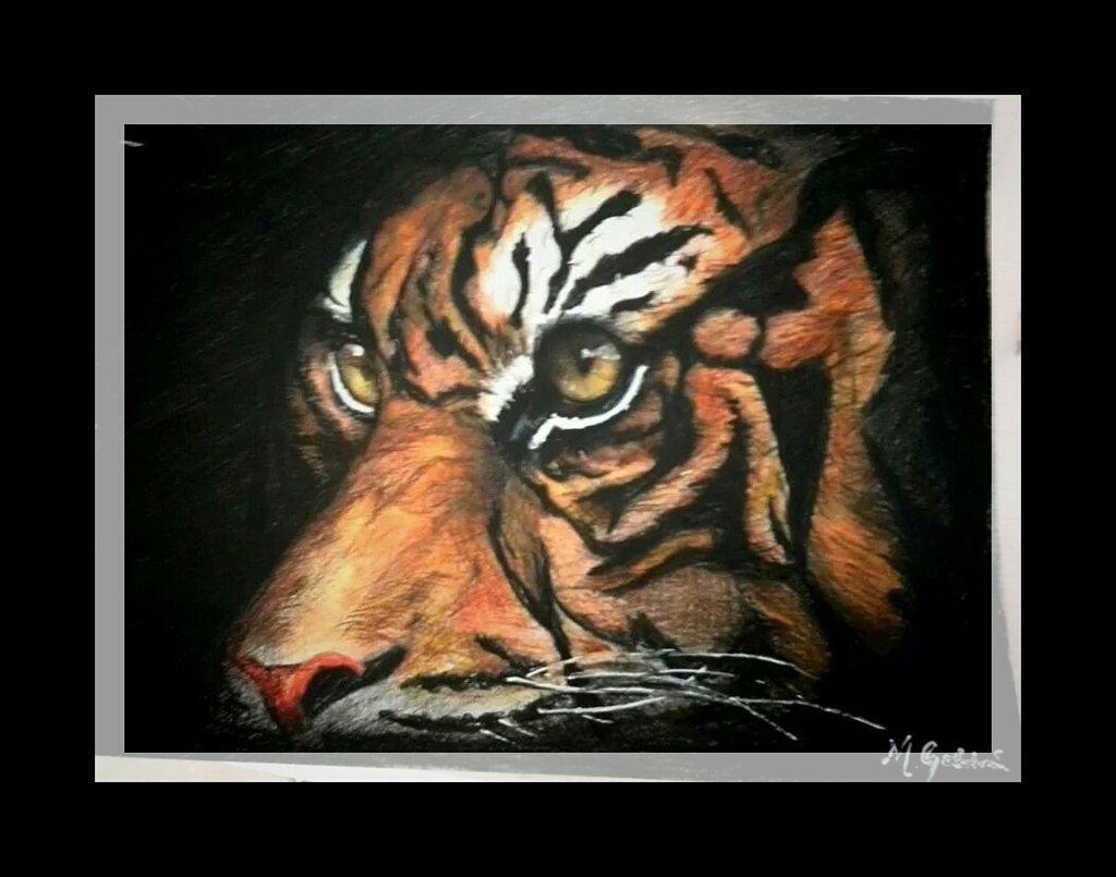 La Tigre.