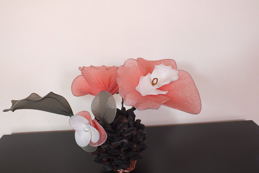 ORCHIDEA ROSA SPLEND
