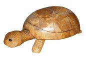 Tartaruga gigante in legno