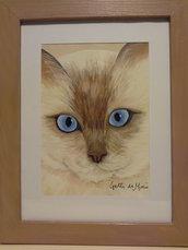 Quadro musetto di gatto con occhi azzurri