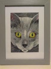 Quadro musetto di gatto grigio con occhi giallo/verdi