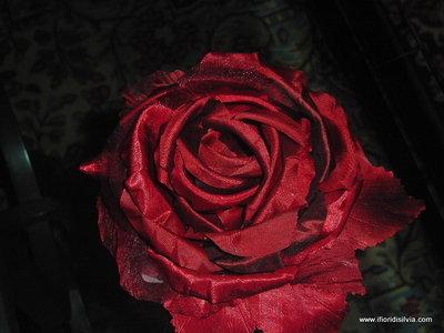 Rosa Jenny