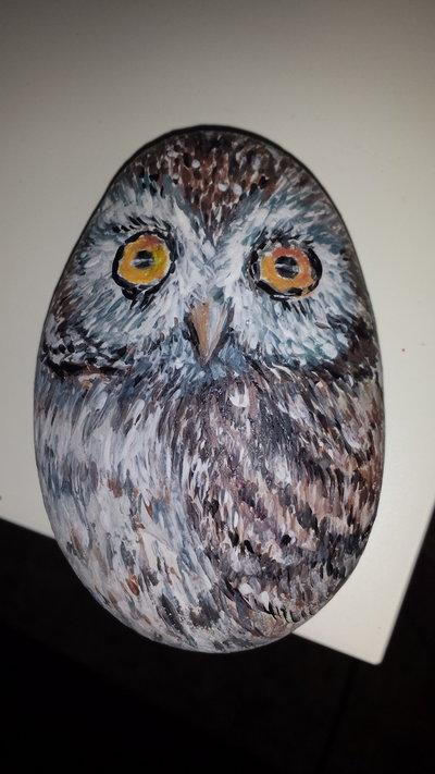 pietra dipinta a mano Civetta