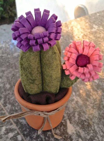 cactus in feltro con due fiori rosa e bordò