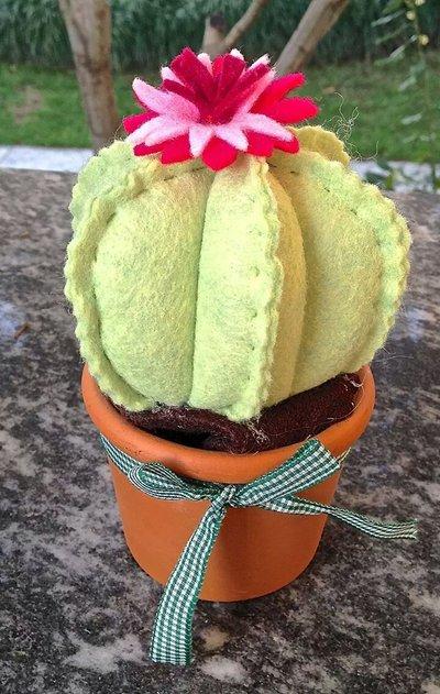 cactus verde chiaro con fiore rosa