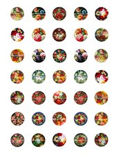 Fiori vintage 25 mm colori misti