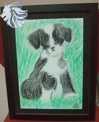 Cachorro Terrier