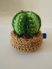 pianta grassa crochet