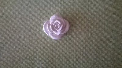 rosa in gesso