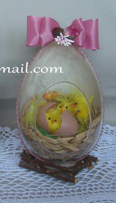 uovo plexiglass con nido pulcini