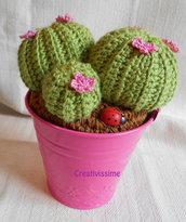 Composizione piante grassa- Cuscino della Suocera- all'uncinetto rosa
