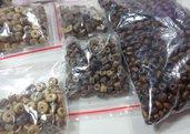 80 grammi Assortimenti Perline in noce di Cocco e Legno