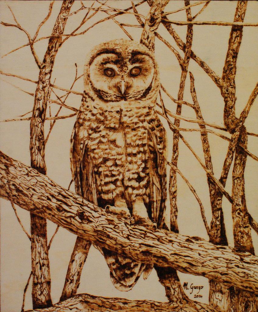 Allocco - quadro cm 25x30 - pirografia su legno