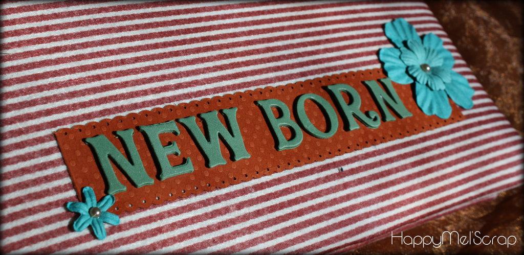 Album fotografico NEW BORN country