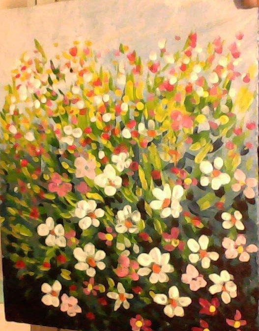 campo di fiori in primavera
