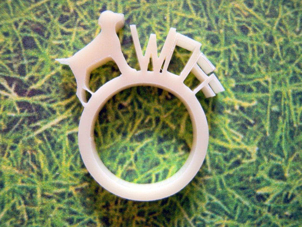 Farm, anello con animale della fattoria_versione con cane