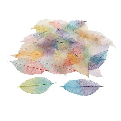 Set 40 foglie colorate - Two tone