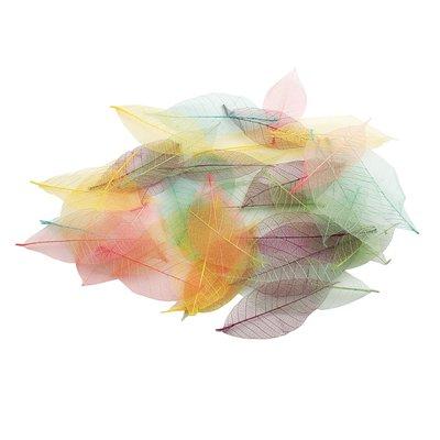 Set 40 foglie colorate - Pastel