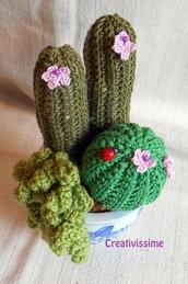 Composizione piante grassa all'uncinetto con vaso decorato