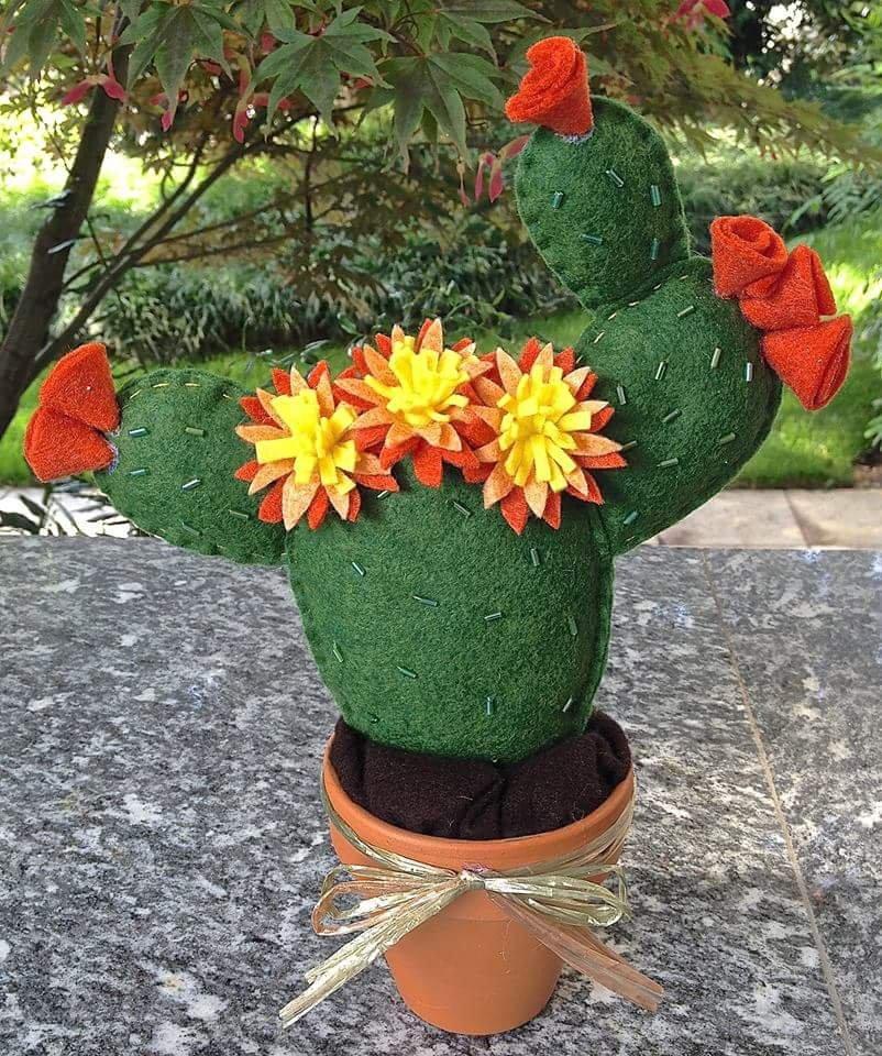 cactus fico d'india in vaso di terracotta