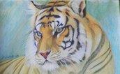 disegno tigre pastelli