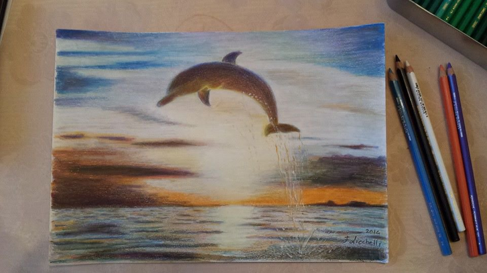 disegno marina con delfino