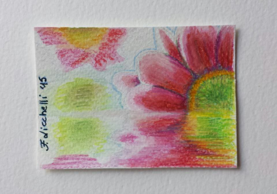Aceo n. 4 matite colorate