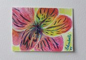 Aceo n. 5 - floreale