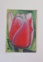 Aceo n. 12 - tulipano