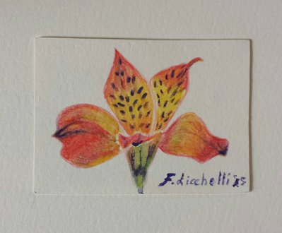 Aceo n. 16 - floreale