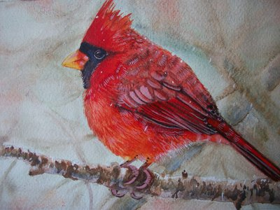 Uccello Cardinale rosso acquerello su carta, dipinto originale