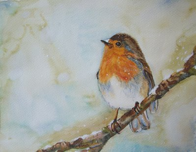 uccello pettirosso acquerello, dipinto originale