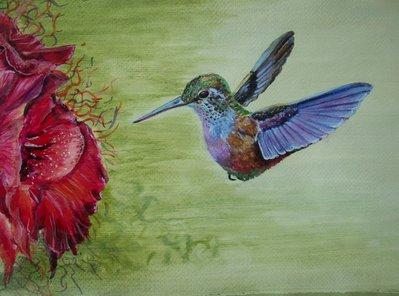Uccelli del paradiso, colibrì, acquerello su carta preparata con lo sfondo acrilico, dipinto originale