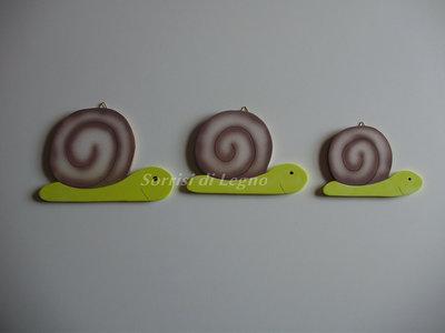 Set di chiocciole colorate di varie dimensioni