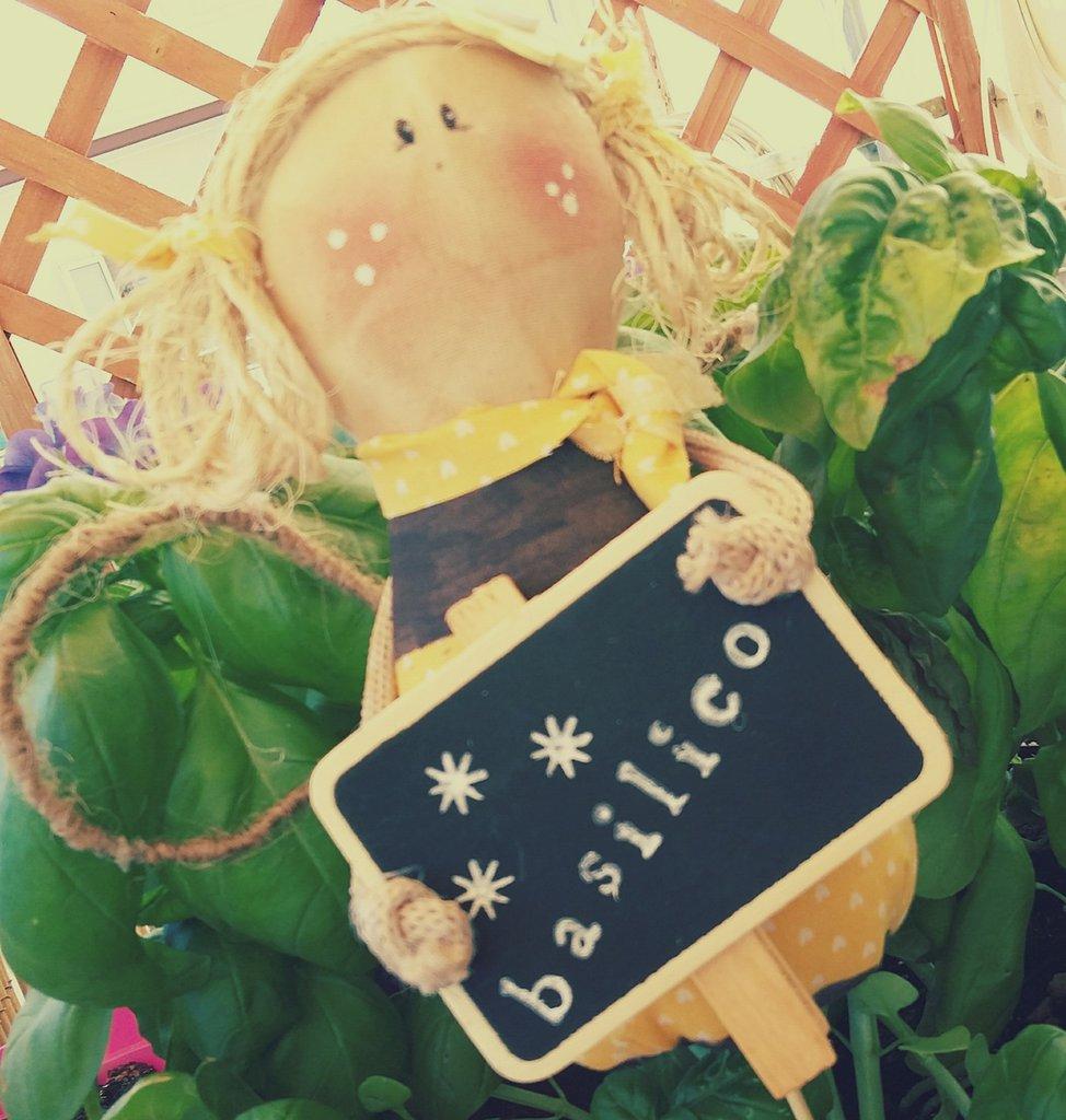 angelo del giardino segnapianta