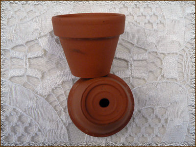 Mini vasetti in terracotta.