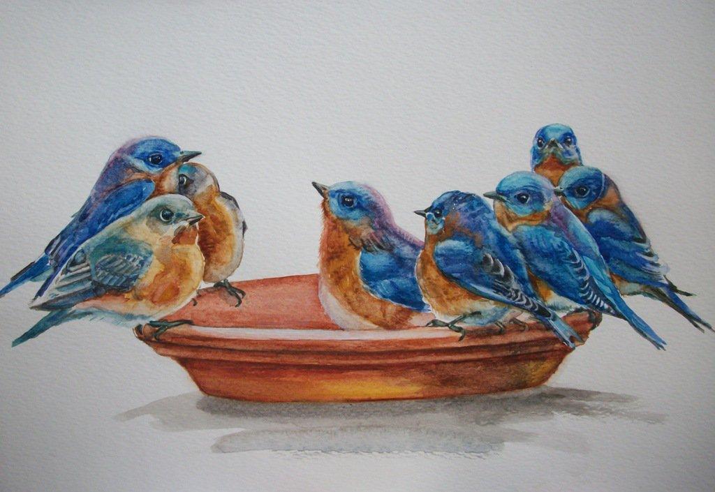 Uccelli acquerello su carta, dipinto originale