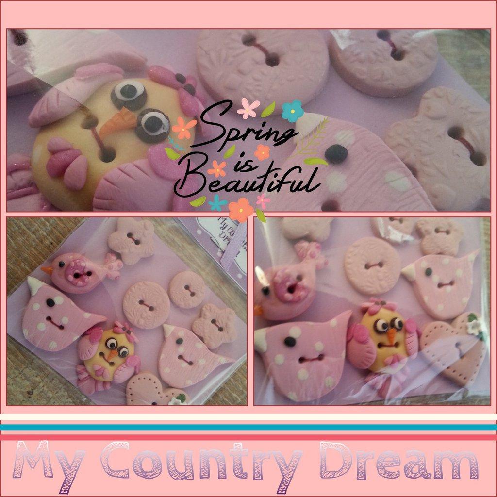 "Bottoni Artigianali ""Pink Bird"""