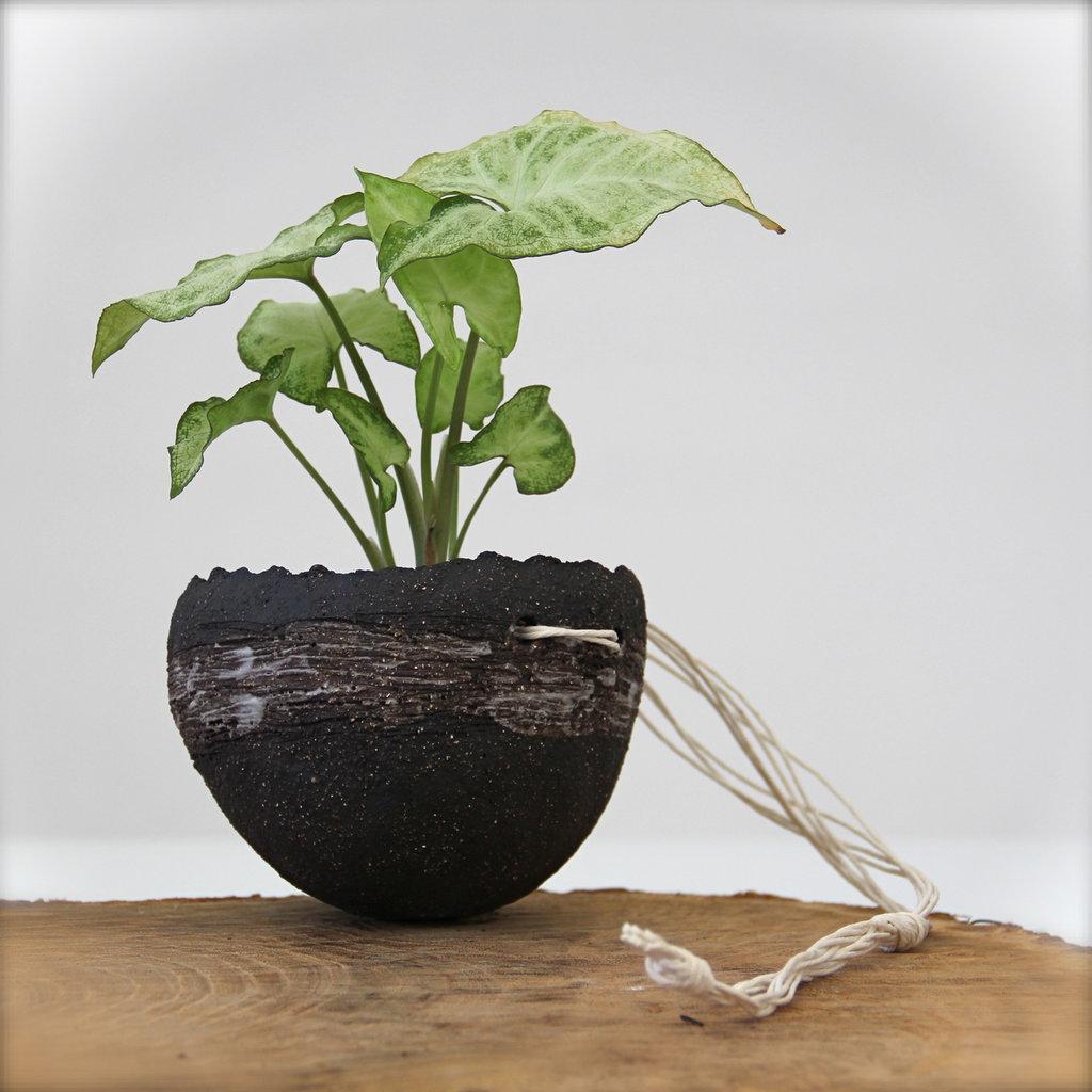 Vaso sospeso con corda in cotone