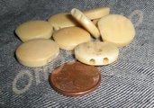 Tagua Nuts beige