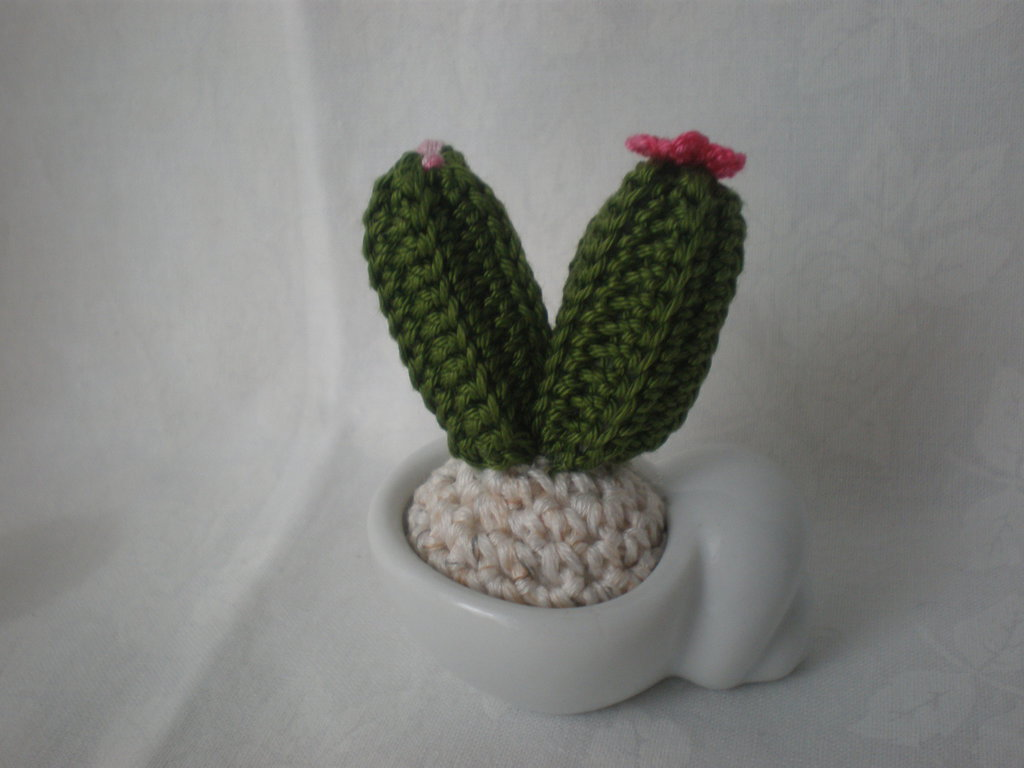 mini cactus uncinetto