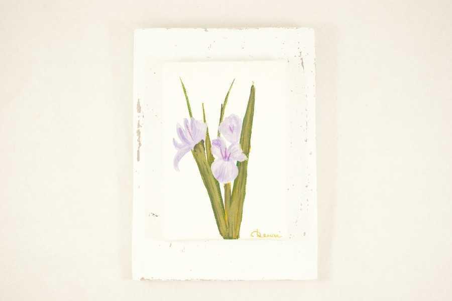Quadretto con fiore di Iris dipinto a mano.ATTENZIONE!!! ARTICOLO RISERVATO PER TITTI.