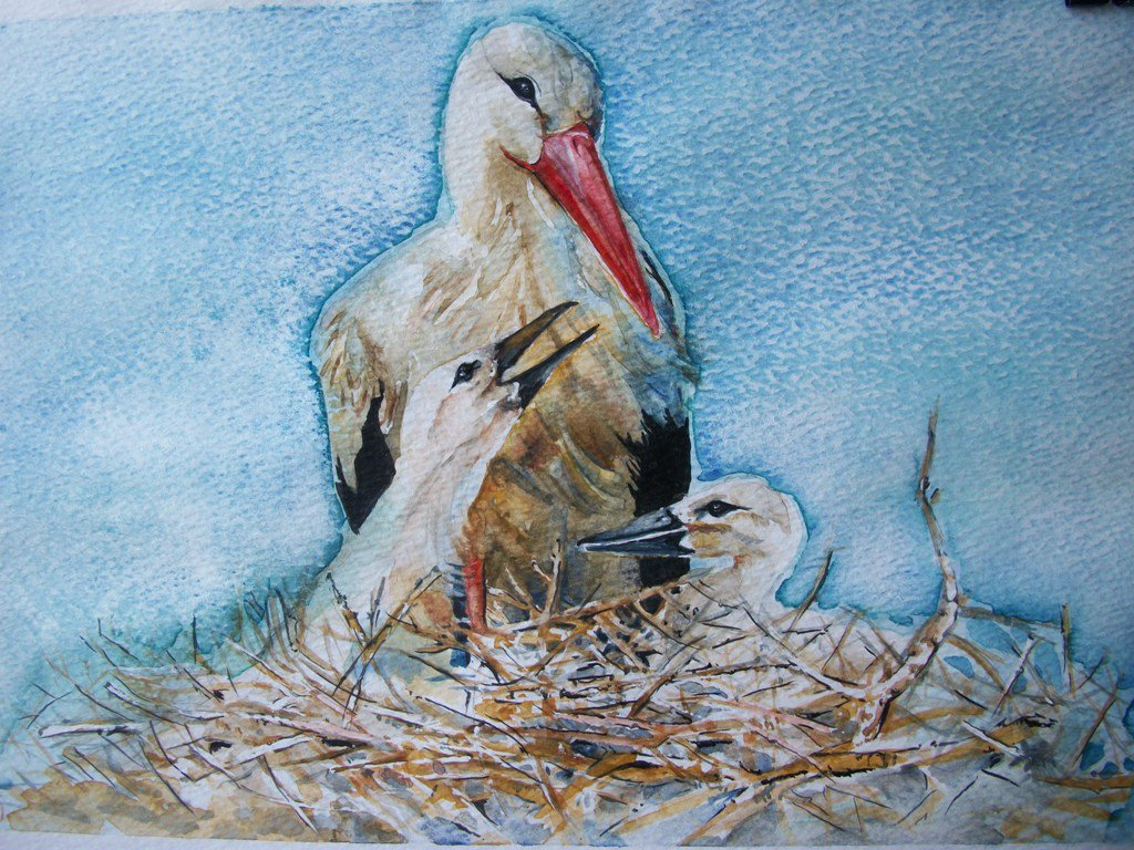 Gli uccelli ( Il nido della cicogna )  acquarello  dipinto originale / Birds (The stork's nest) Original watercolor painting