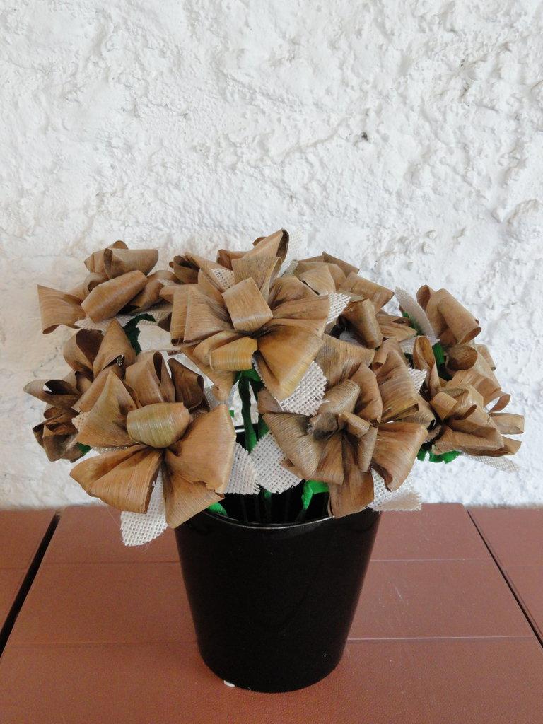 Rose di pannocchia