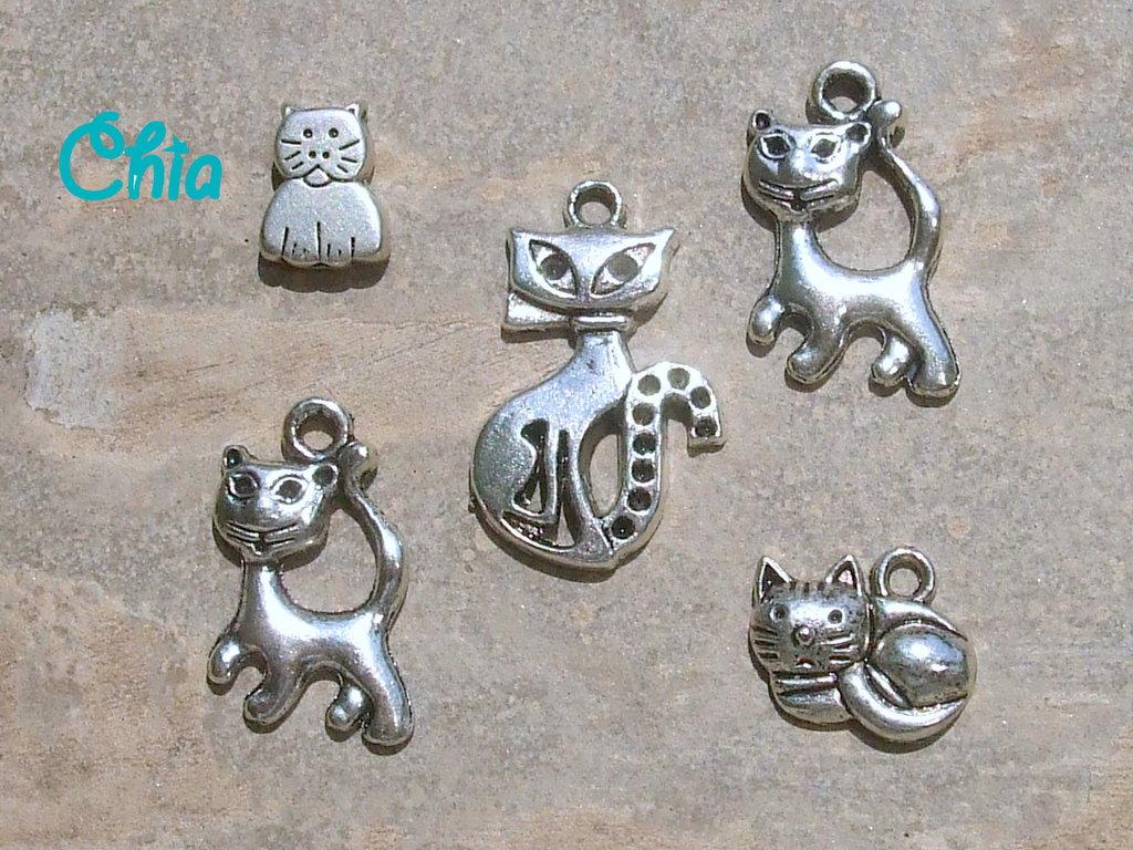 5 charms gatti misti