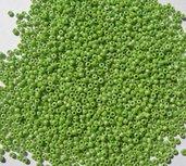 20g conteria verde perlato