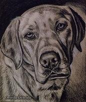Ritratto cane Labrador retriver tecnica mista su cartoncino