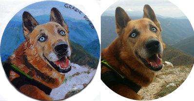 Ritratto su commissione cane gatto da foto acrilico su tela