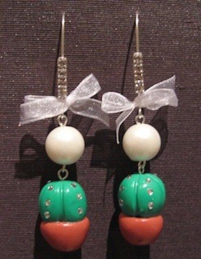 Cactus orecchini 2